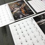 fotokalender kvalite