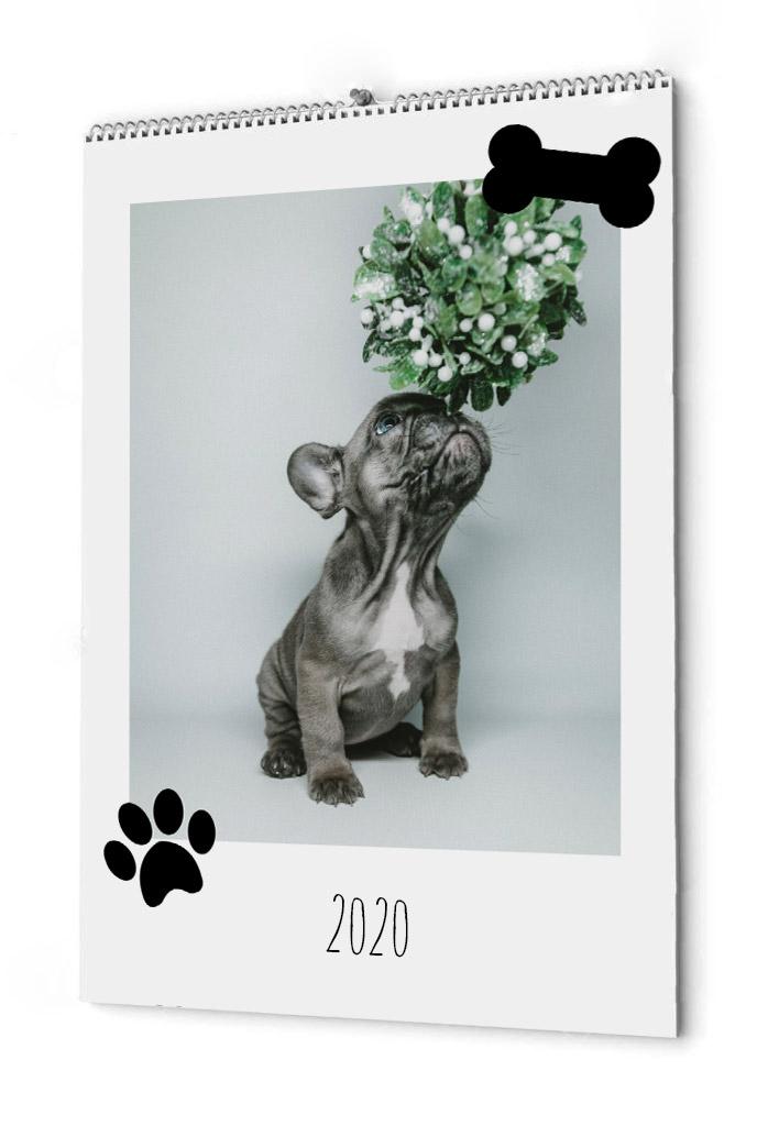 Fotokalender din hund