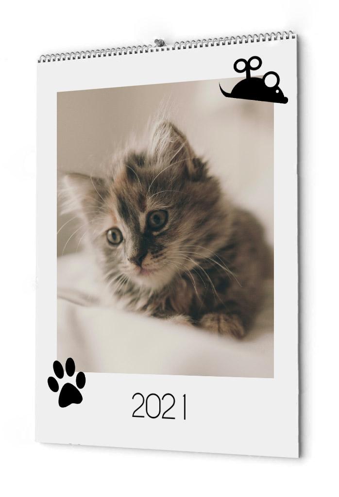 Fotokalender för katten